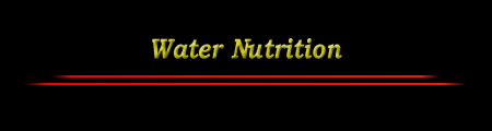 Water Nutrition